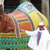 Lou camel - Béziers - Guide des Saveurs - histoire